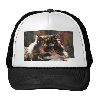 Calico Cat With Green Eyes Trucker Hat