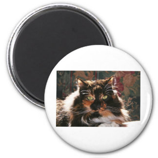 Calico Cat With Green Eyes Fridge Magnet