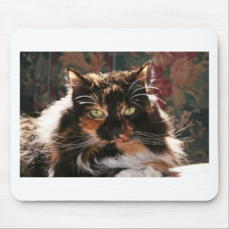 Calico Cat With Green Eyes Mouse Pad