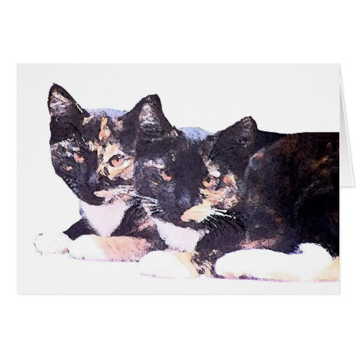 Calico Cats Card