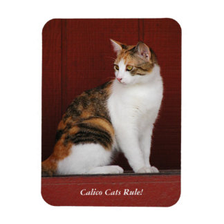 Calico Cats Rule! Magnet