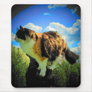 Calico clouds II Fish Eye Lens Mouse Pad