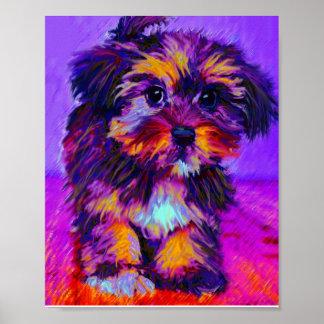 calico dog print