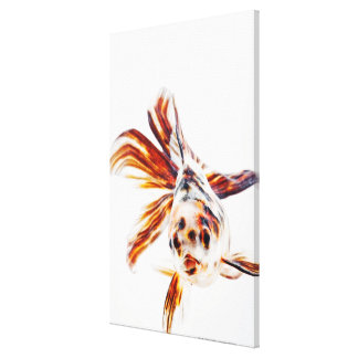 Calico Fantail Comet goldfish (Carassius Gallery Wrap Canvas