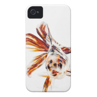 Calico Fantail Comet goldfish (Carassius iPhone 4 Cover