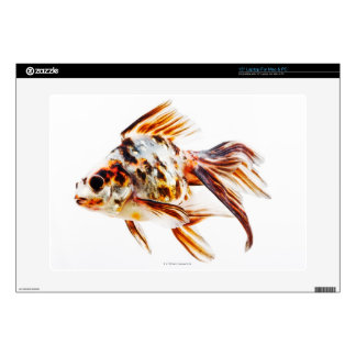 """Calico Fantail Comet goldfish Decal For 15"""" Laptop"""