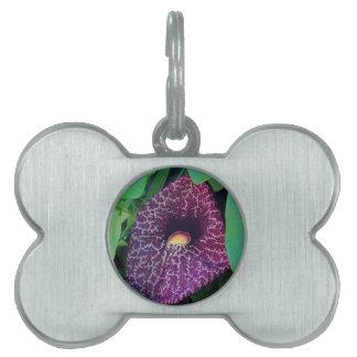 Calico Flower Pet Name Tag