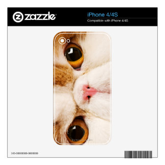 Calico Harlequin Persian Skin For iPhone 4S