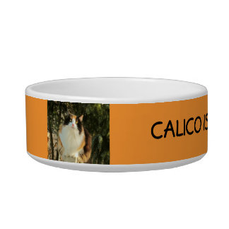Calico is the way to go cat food bowl