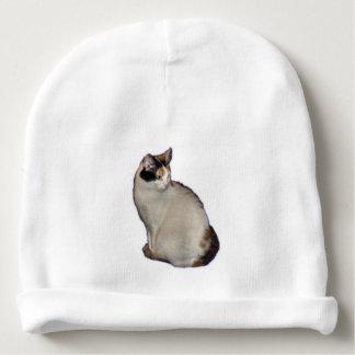 Calico Kitten Baby Beanie