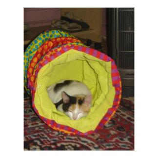 Calico Kitten Napping Letterhead