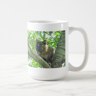 Calico kitten peering down from a tree classic white coffee mug