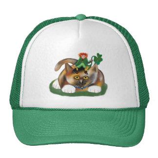 Calico Kitten Plays with her Leprechaun Pal Trucker Hat