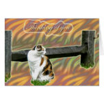 Calico Kitty Cat Thinking of You Card