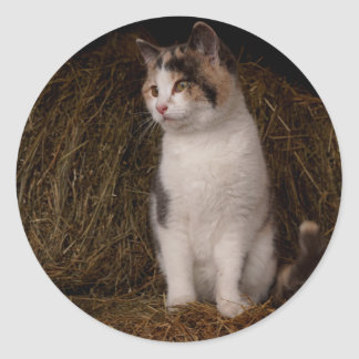 Calico Kitty Classic Round Sticker
