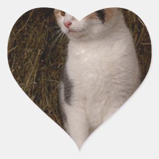 Calico Kitty Heart Sticker