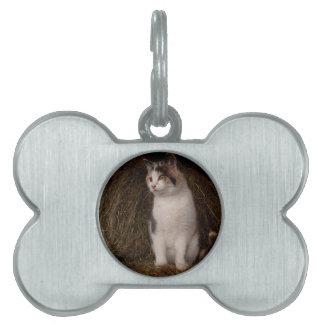 Calico Kitty Pet Tag