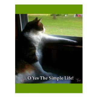Calico Kitty The Simple Life Postcard