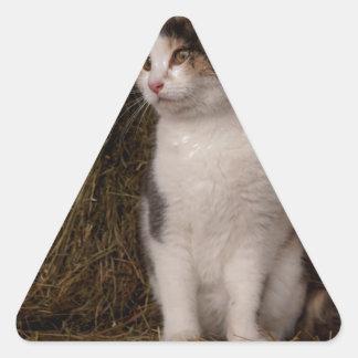 Calico Kitty Triangle Sticker