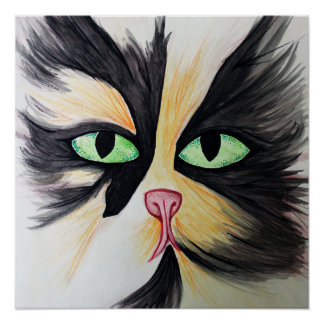 Calico Maine Coon Cat Poster