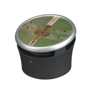 Calico Pennant Bluetooth Speaker