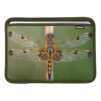 Calico Pennant MacBook Air Sleeve
