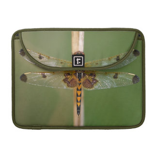 Calico Pennant Sleeve For MacBooks