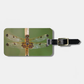 Calico Pennant Tags For Luggage