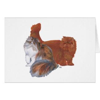 Calico Persian Cat and Red Longhair Cat Card