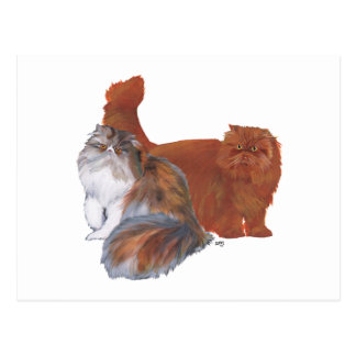 Calico Persian Cat and Red Longhair Cat Postcard