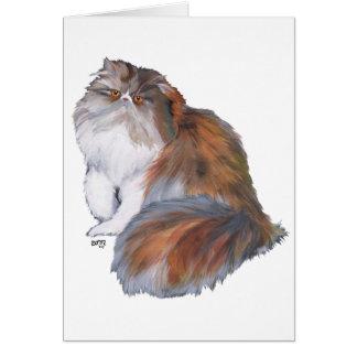 Calico Persian Cat Card