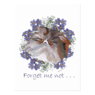 Calico Persian Cat Forget-Me-Not Postcard