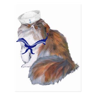 Calico Persian Cat Sailor Postcard