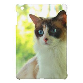 Calico Ragdoll Kitty iPad Mini Case