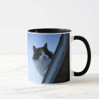 Calico Roof Cat with Irish Proverb Mug