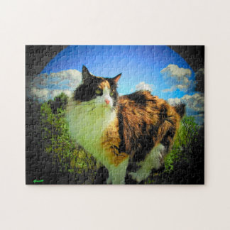 Calico Sky by djoneill or make your own Jigsaw Puzzle