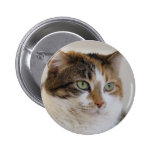 Calico tabby cat face pin