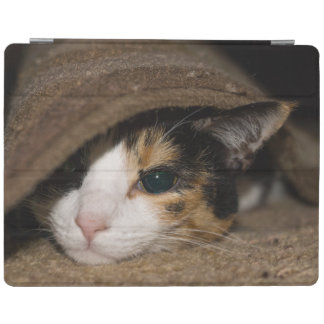 Calico Taco iPad Smart Cover