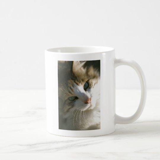Calico Tiger Cat Coffee Mug