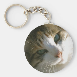 Calico Tiger Cat Keychain