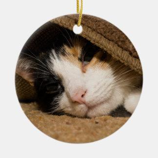 Calico Under The Rug Ceramic Ornament
