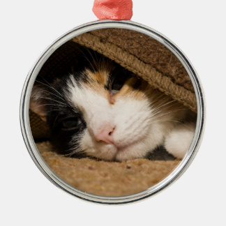 Calico Under The Rug Metal Ornament