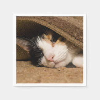 Calico Under The Rug Napkin