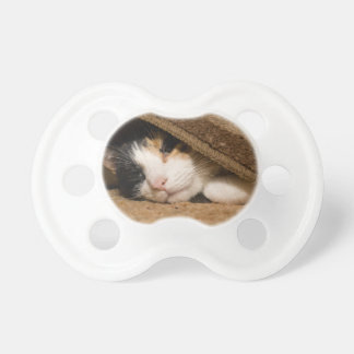 Calico Under The Rug Pacifier