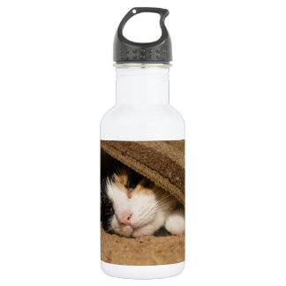Calico Under The Rug Stainless Steel Water Bottle