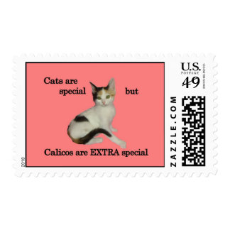 Calicos are EXTRA Special Postage