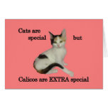Calicos Are Special Card