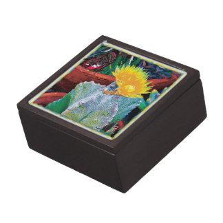 Caliente Cactus Gift Box