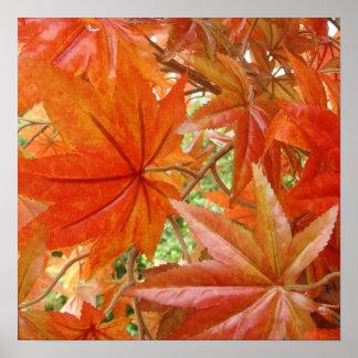 Caliente las hojas posters