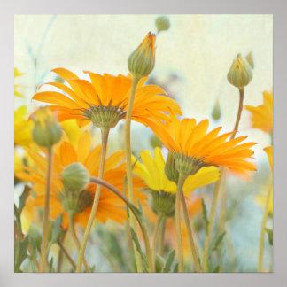 Caliéntese en la impresión anaranjada y amarilla d impresiones